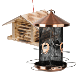 Lintujen ruokinta-automaatit